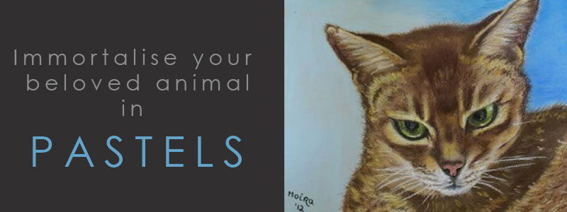 Pastel Pet Portraits - Immortalise your beloved animal in PASTELS